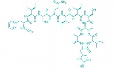 Teixobactin učinkovit protiv superbakterije