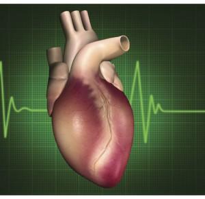 Šta sve izaziva srčane aritmije?