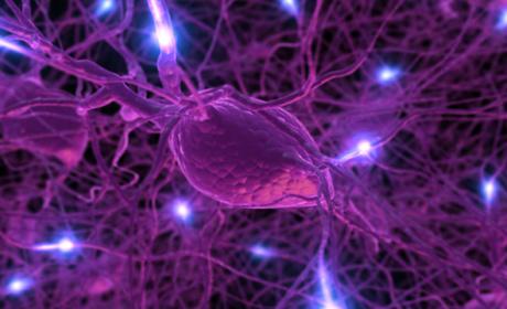 Simptomi i znaci bolesti centralnog nervnog sistema
