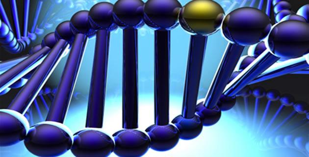 Genetska struktura