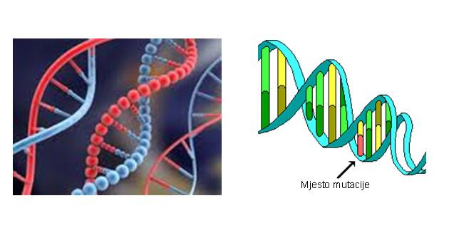Mutacija gena