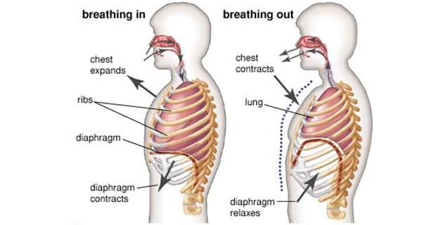 Širenje pluća