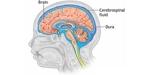 Cerebro-spinalni likvor