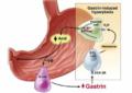 Tkivni hormoni