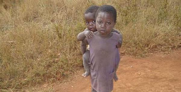Broj žrtava malarije opada