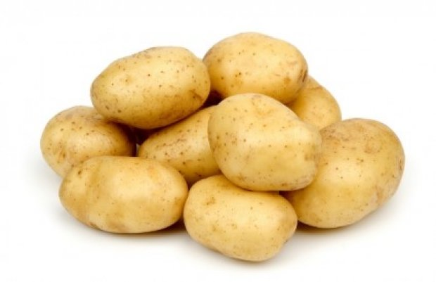 GMO krompir