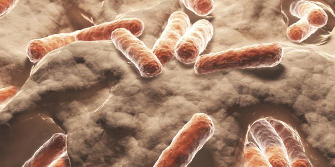 Bakterije imune na lijekove