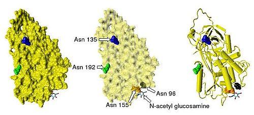 Antithrombin